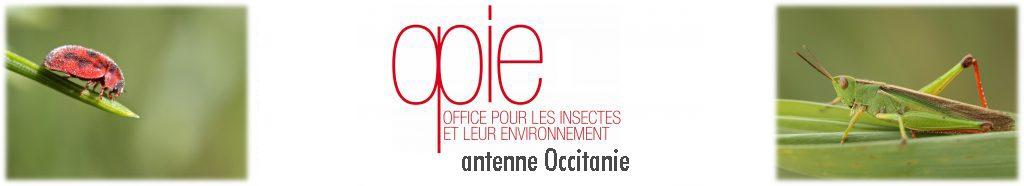 OPIE antenne Occitanie